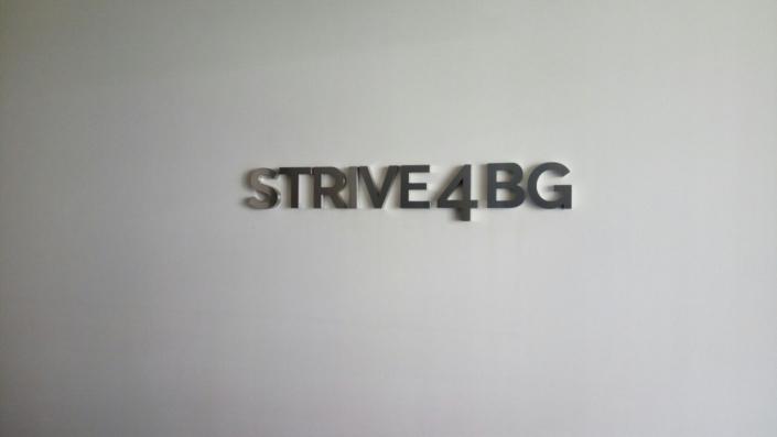 Комплексна информационна визуализация за фирма Страйв 4БГ